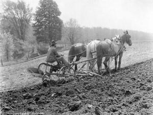 farmer with horses and plow
