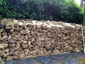 Eunice's woodpile